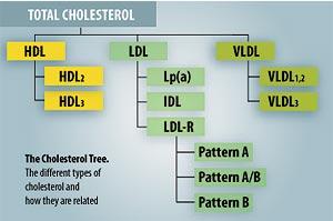 lipid-subsets